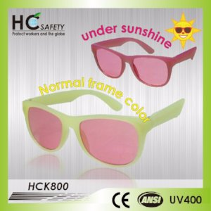 HCK800 Sunglasses for Kids