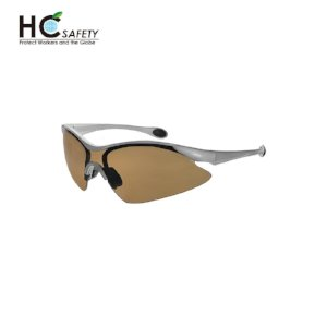 Safety Glasses P581-C